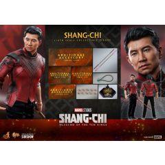 SHANG-CHI HOT TOYS